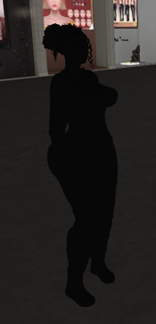 R12-1-renderOthersAsSilhouette.png